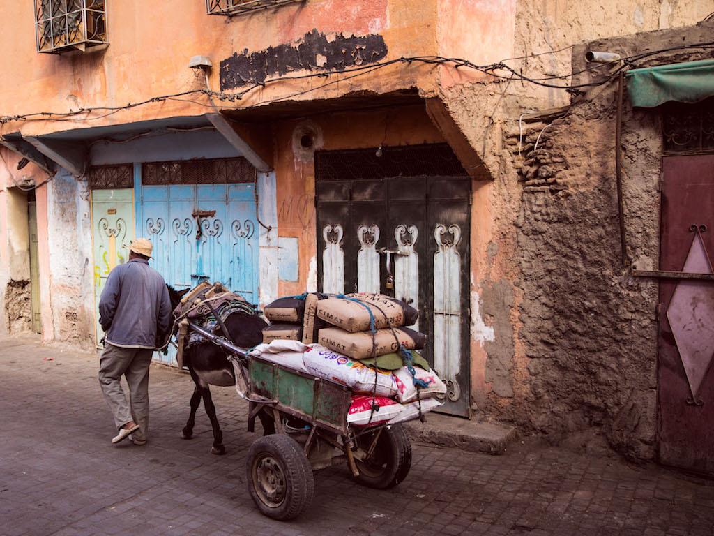 Marrakech-City-Scenes-127.jpg