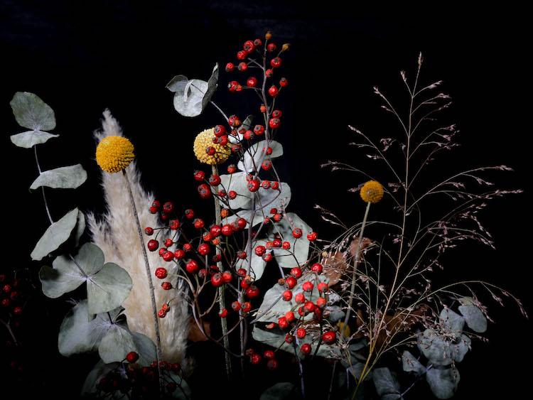 LilyWanderlust-Autumn-Blooms-3.jpg