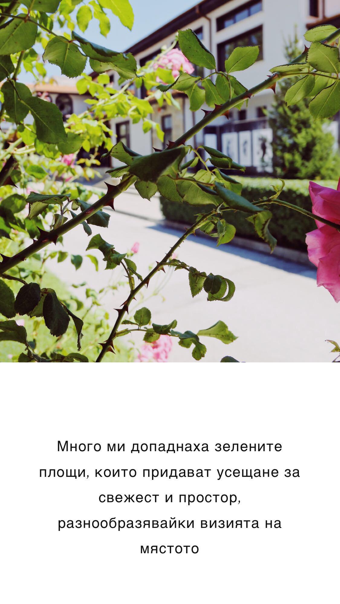 IMG_4138.jpeg