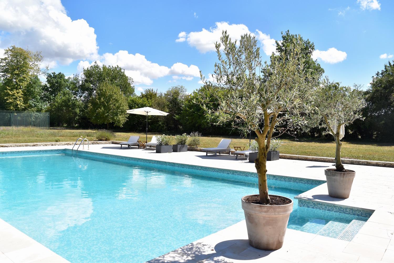 pool and olive trees.jpg