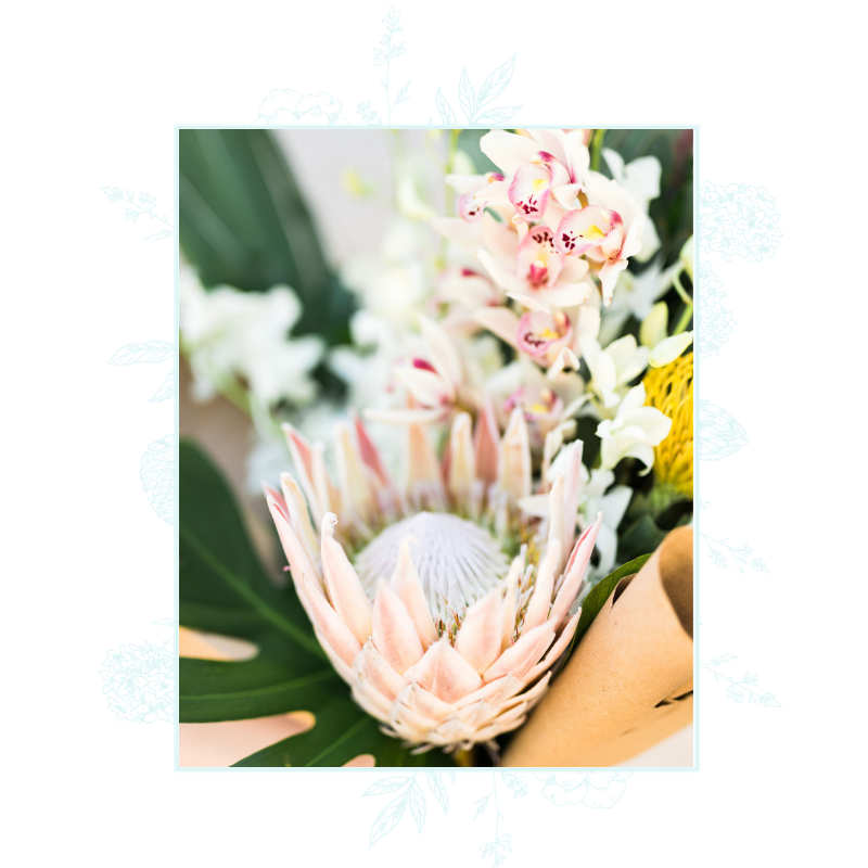 floral border graphics for website copy 2.png