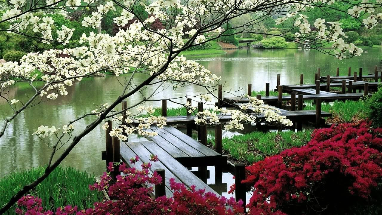 oriental-garden