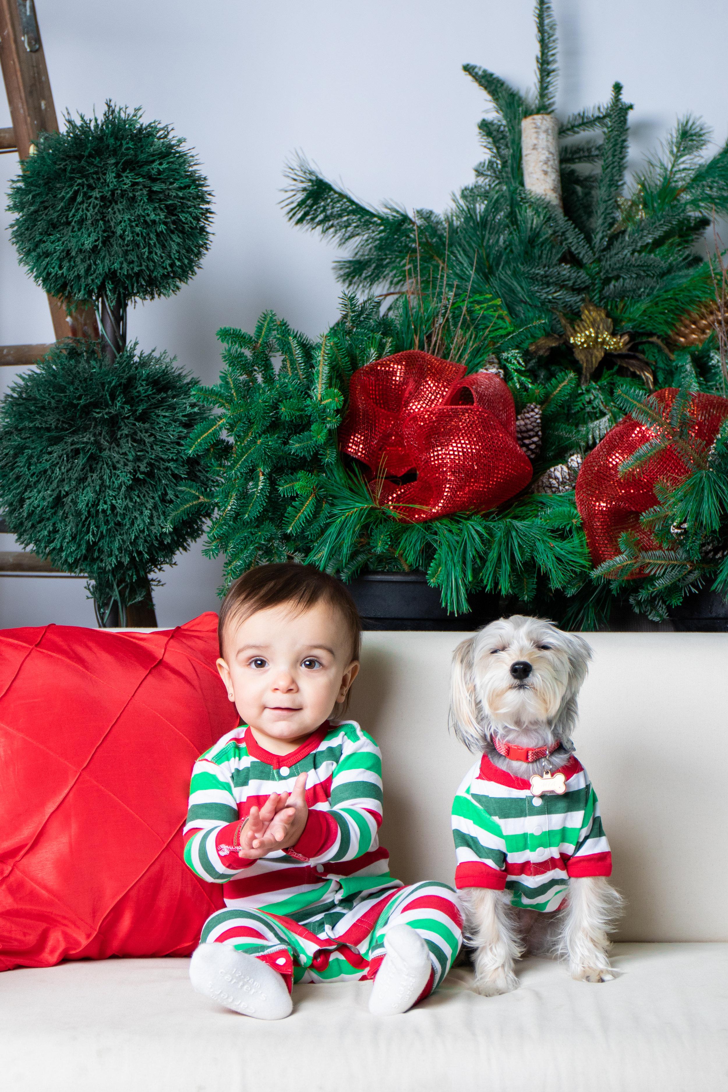 SophiaChristinaRob_ChristmasMini-12.jpg
