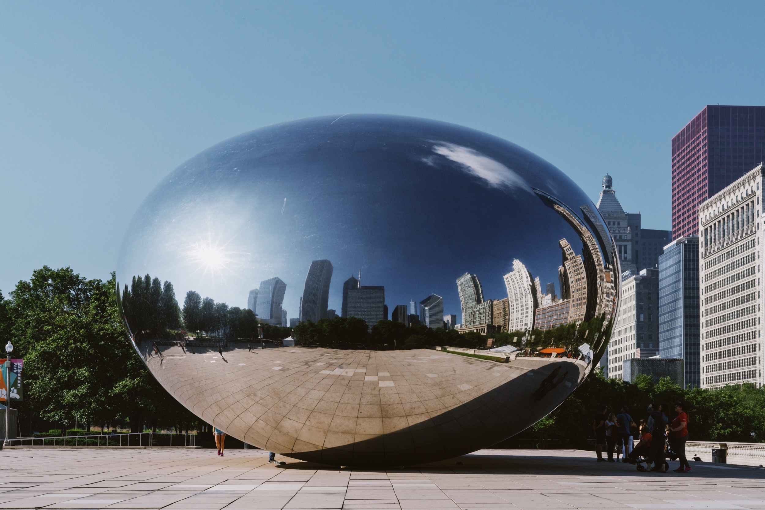Copy of The Bean