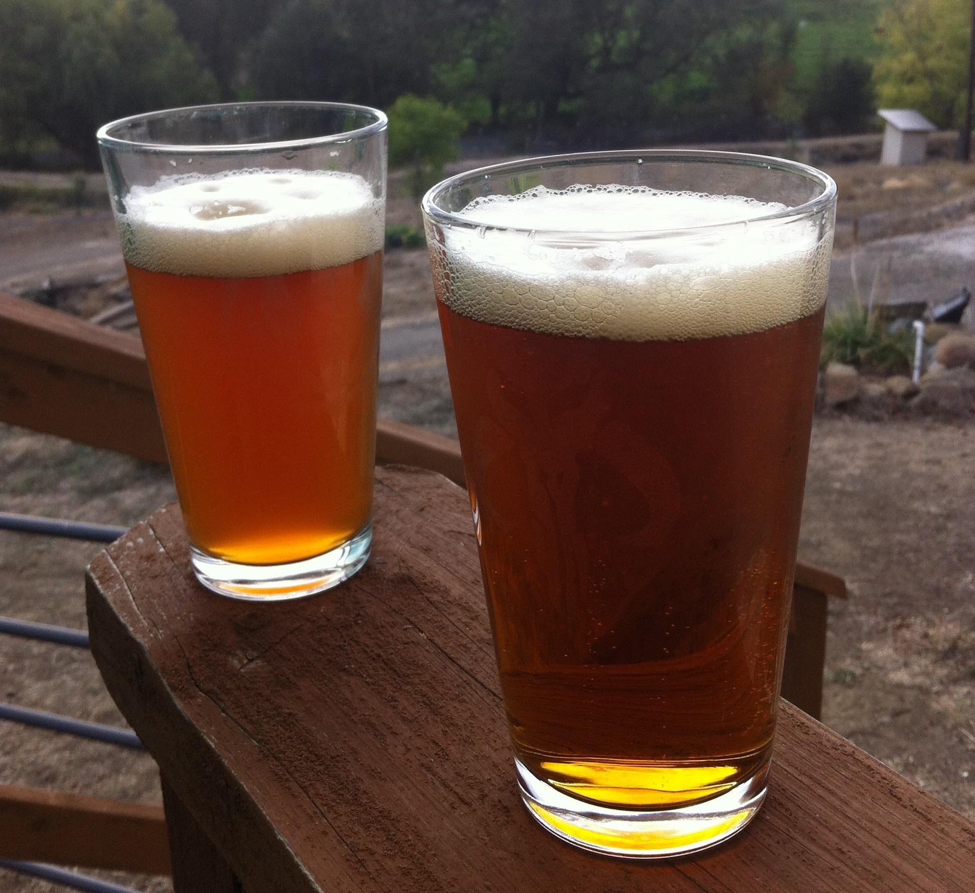 Beer Pair.jpg