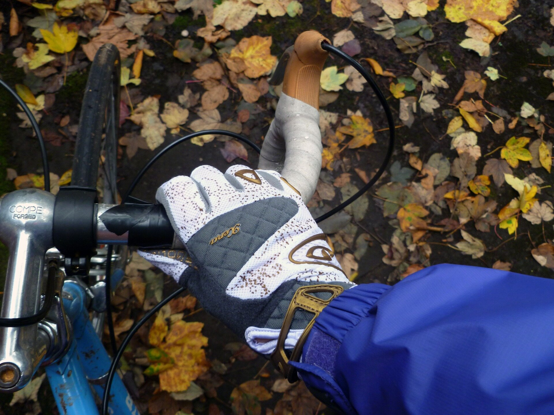 10 Autumn Training Tips for Cyclists and Runners.jpg