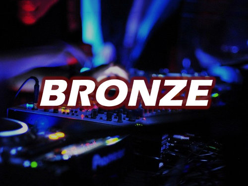 BRONZE PACKAGE - 4 HOURS(1) DJ & (1) MC100 TO 150 GUESTBASIC LIGHTING