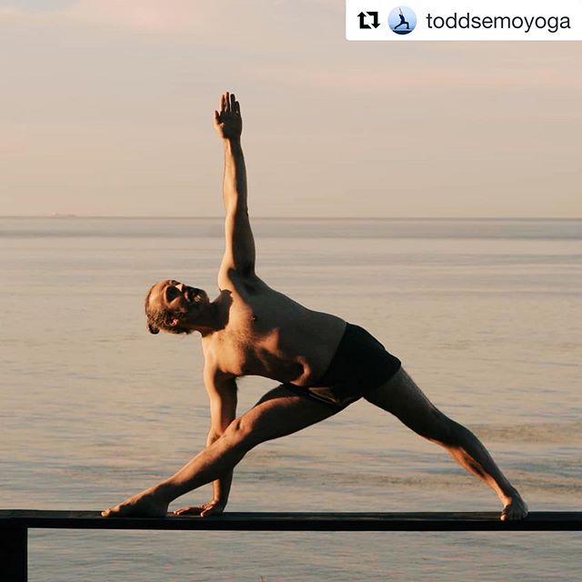 LOW-BACK CARE 🧘🏻♂️ . . Workshop Description 💡: The lower back is one of the most common body ailments that the general population experiences throughout their lifetime. Join Certified Iyengar Yoga Teacher (CIYT) @toddsemoyoga as he addresses techniques and approaches to yoga asana to minimize, alleviate and prevent lower back pain. This workshop is best suited for those with at least 6 months of hatha yoga experience. . . 📆: Sunday, January 13th . ⏱: 2:00-4:30 PM . 📍: @orangecountyyoga studio (plenty of parking available) . 💵: $50 Early Bird Pricing, $60 Day Of . 💬: Register through our profile link or at http://www.ocyogastudio.com/workshops-series/