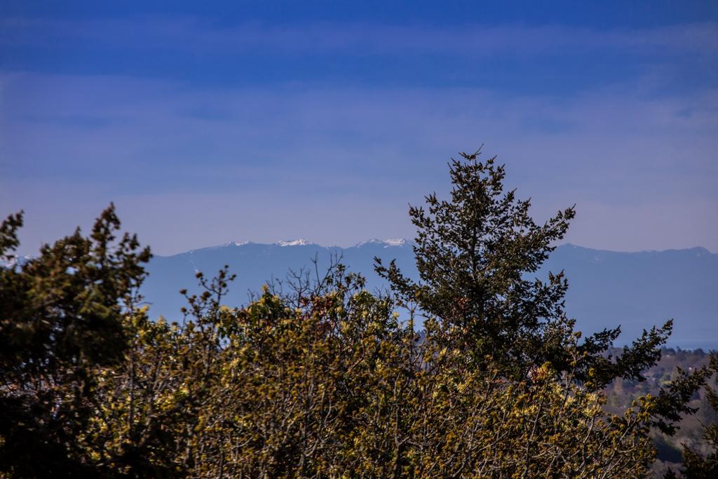 2829 Arbutus Views-MLS-2.jpg