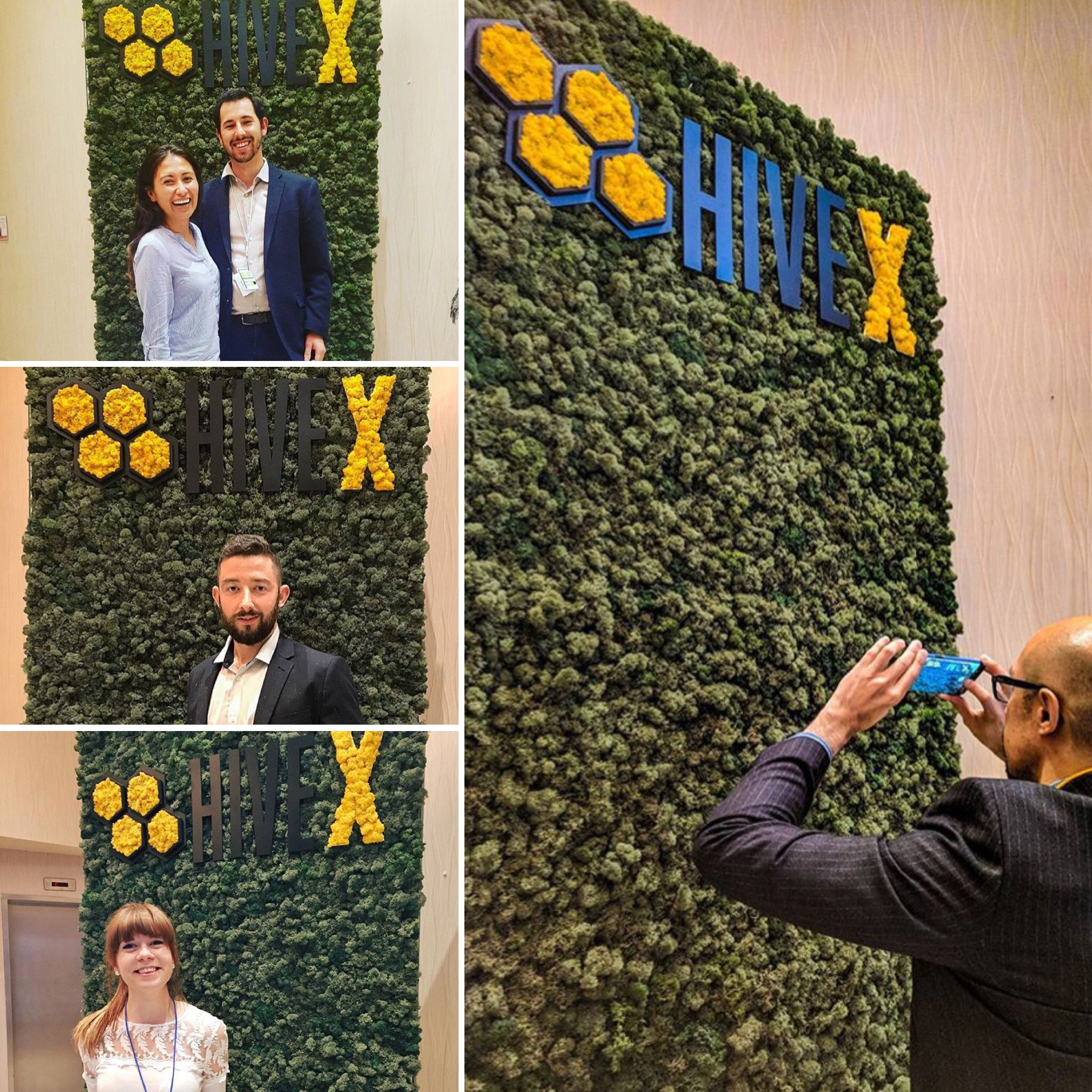 Rentable Greenteriors photo wall, pictures from Hivex 2017 Conference in Hamilton