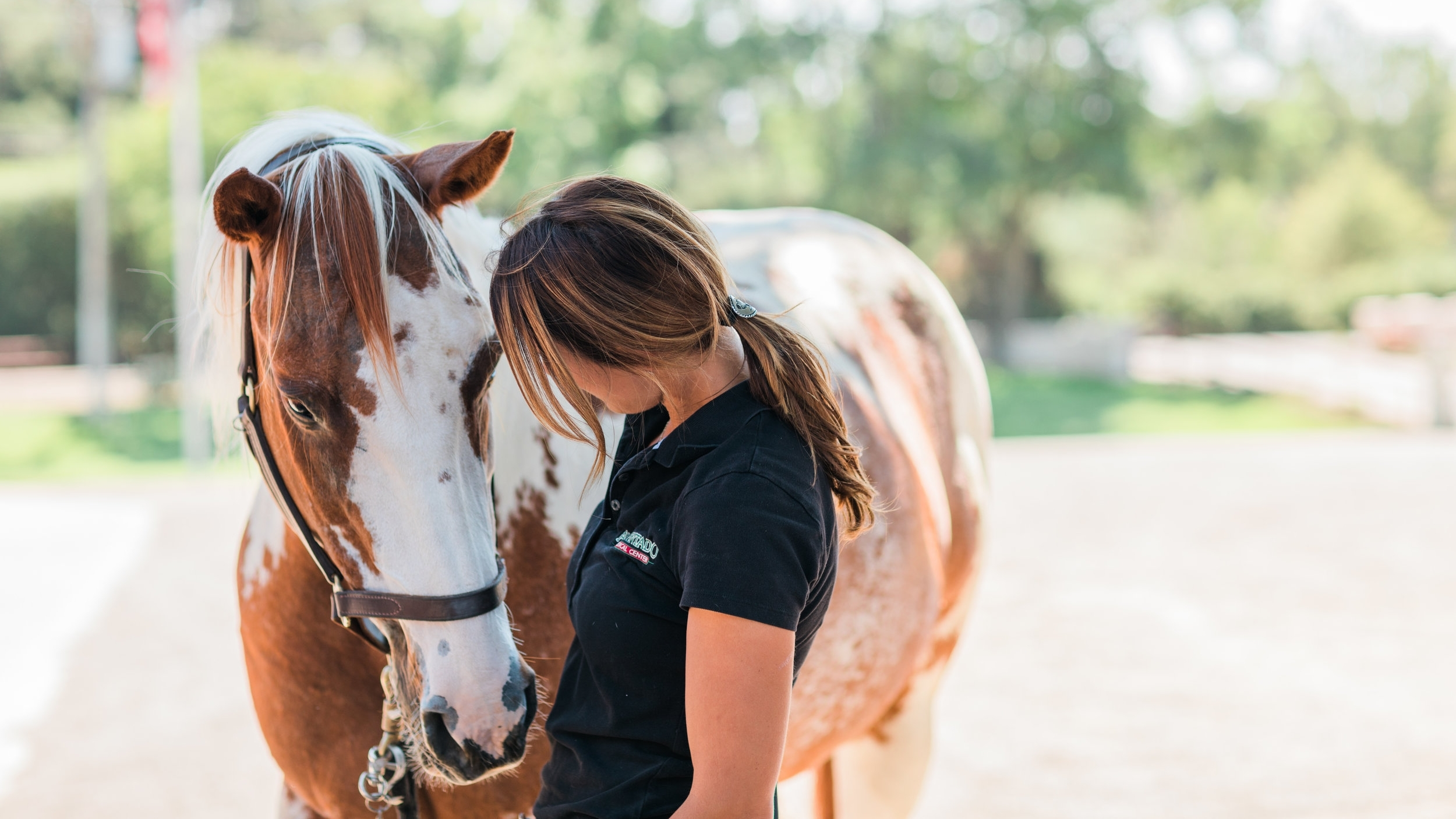 WE LOOK FORWARD TO WELCOMING YOU - Our team is standing by to assist you with questions or to schedule an appointment.  We're dedicated to your horse's care and look forward to seeing you.