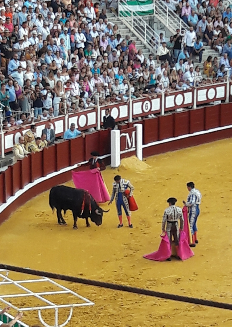 For those who are pro-bullfighting, there is much more to the bullfight than the fight.