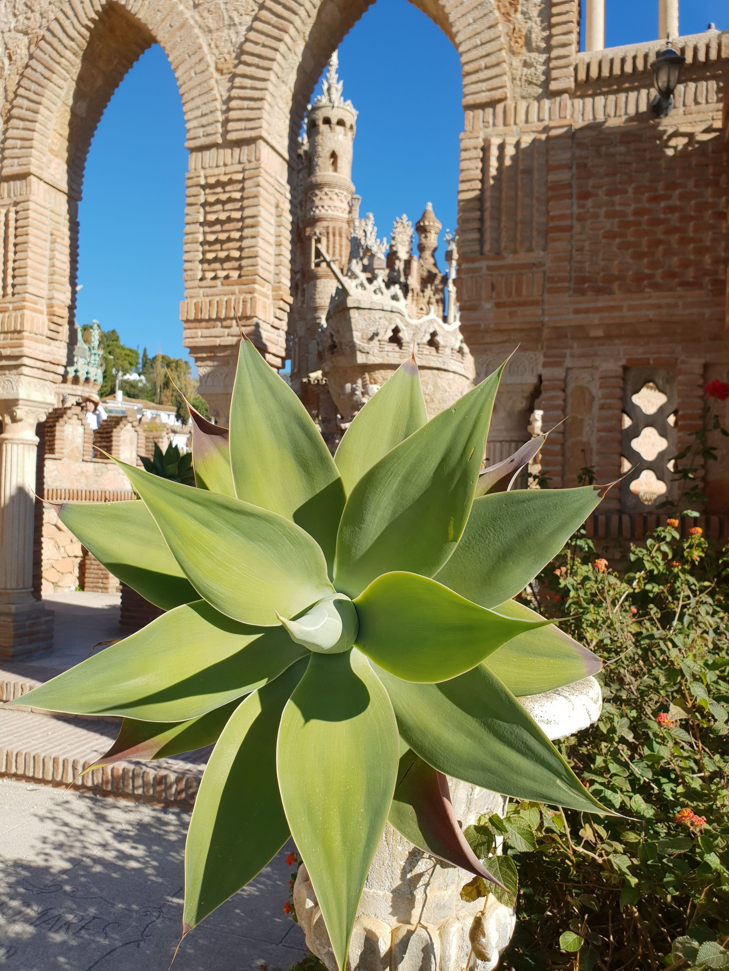 The plant life and views surrounding the 'castle' are intriguing and incredibly photogenic too!