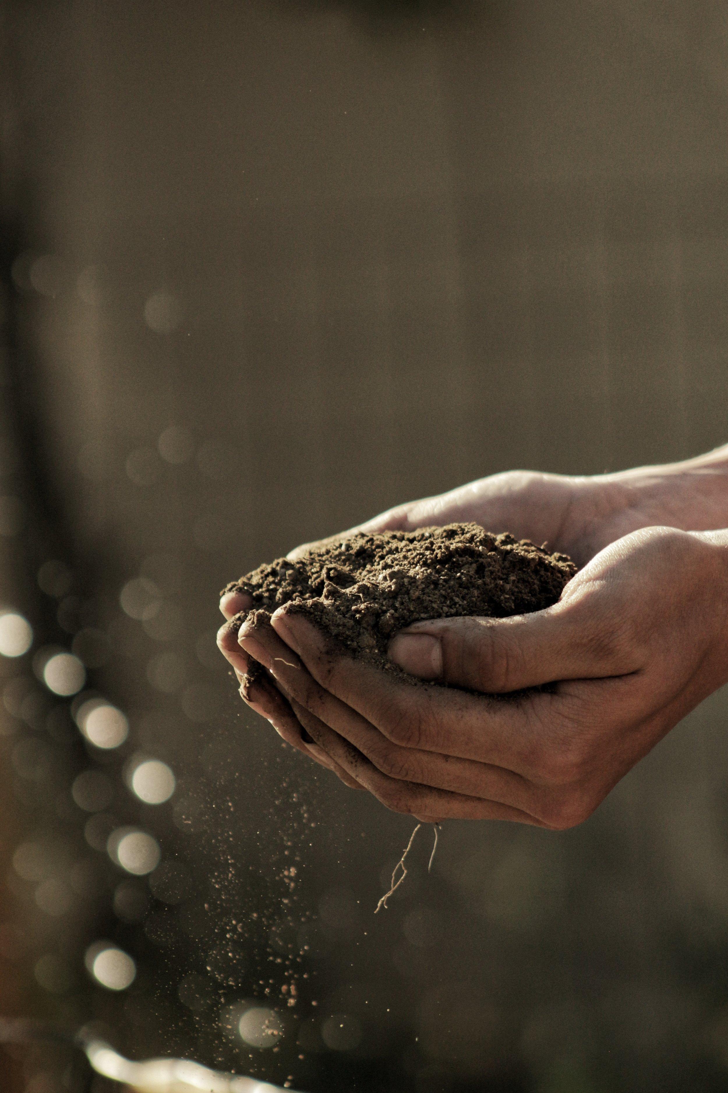 Hand holding dirt. Farmer. Photo source Gabriel Jimenez on Unsplash