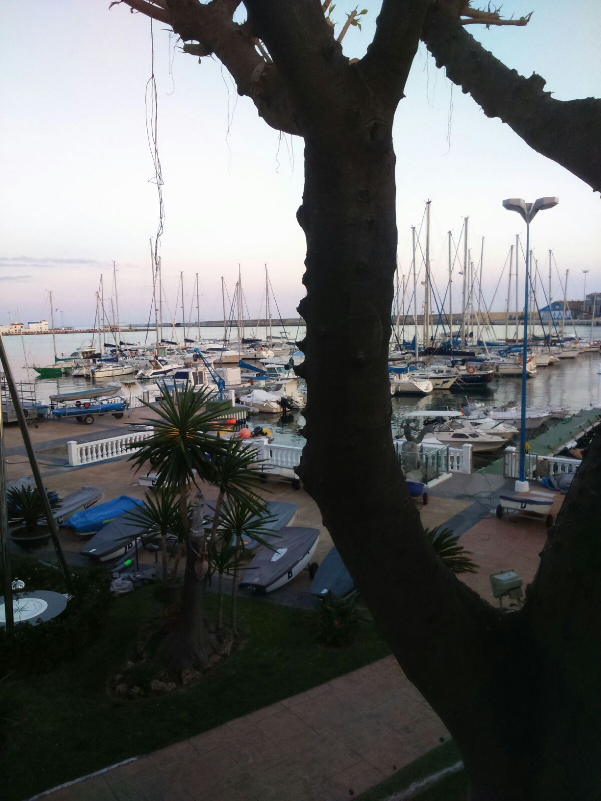 The port of Motril