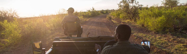 African Safari   Holiday Travel