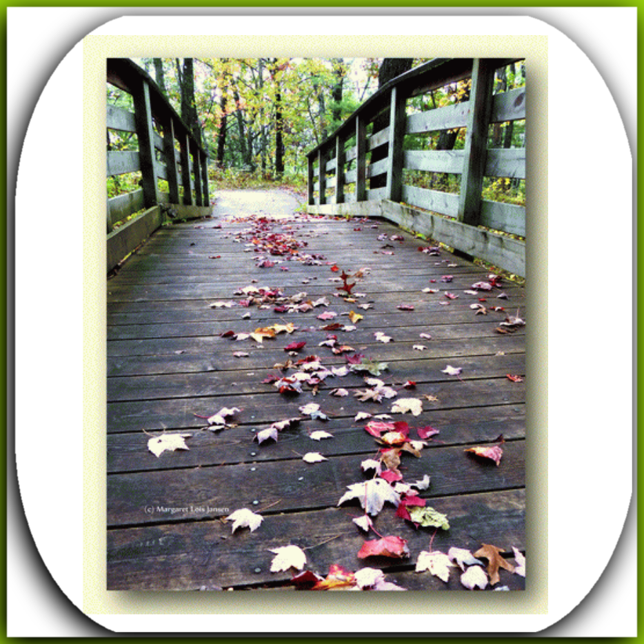 pathways      prints, cards, book clips