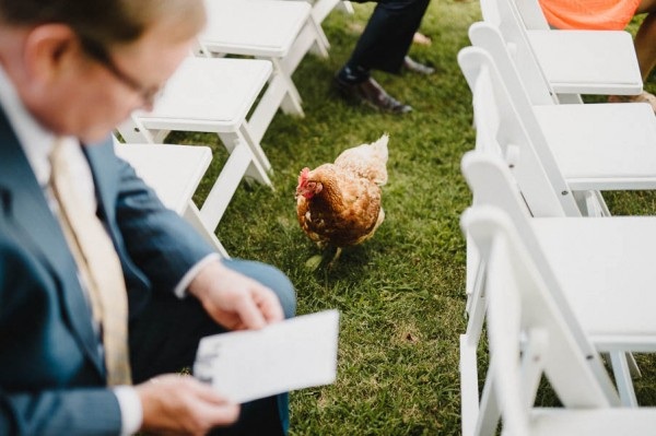 hudson-valley-farm-weddings-pioneer-farm-weddings-warwick-ny-chicken-joins-wedding-ceremony.jpg