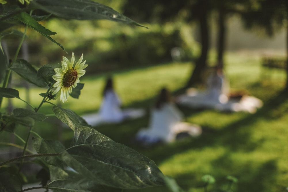 Events — Hudson Valley Farm Weddings - Upstate NY | Pioneer Farm