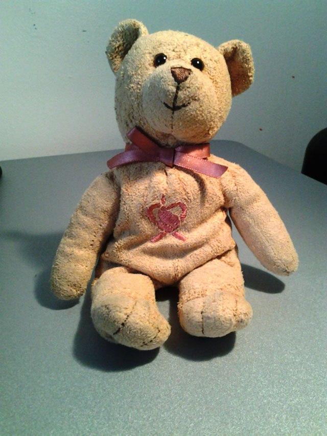 BC bear.jpg