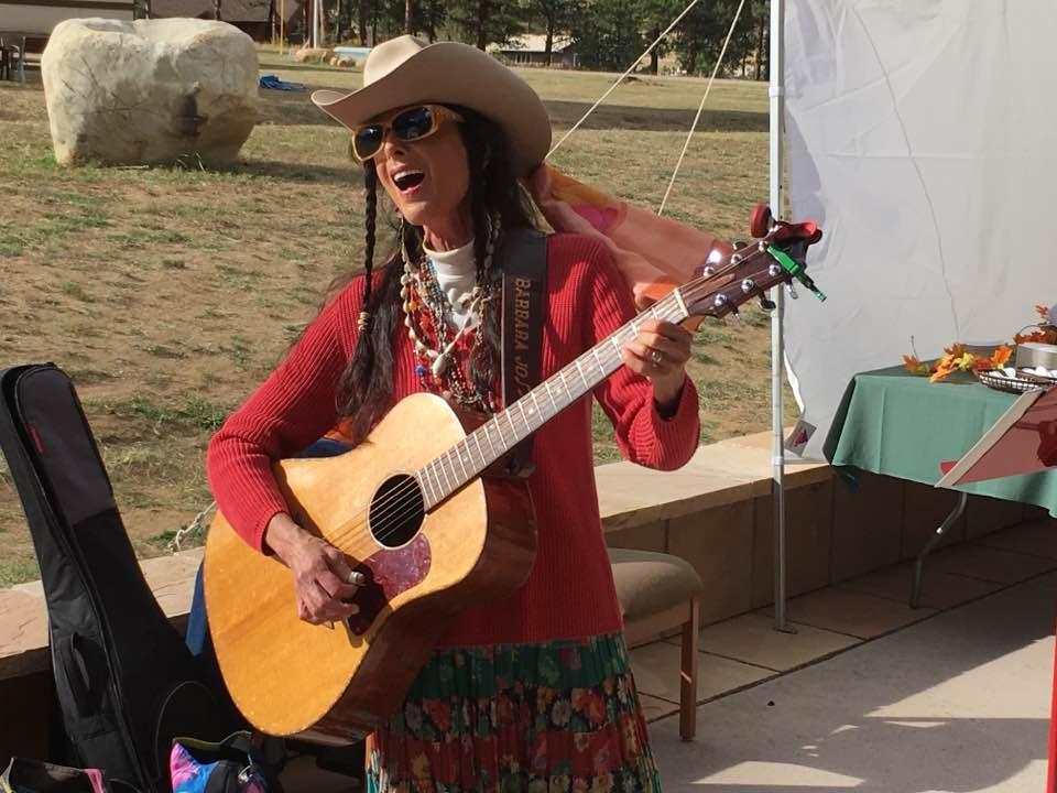 Barbara Jo Kammer performing at the Harmony Foundation Alumni Gala 2017