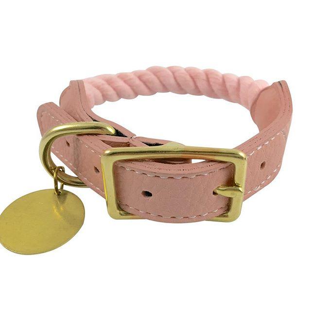 Buy via link in profile or https://tinyurl.com/yxfnhg28 • • • • • #collar #nekogirl #catsofinstagram #kittenplay #petplaycommunity #cats #catstagram #instacat #submissive #accesorios #kittenplaycommunity #kitty #petgirl #bisuteria #kitten #kittengirl #petstagram #pets #kittengear #catlover #puppyplay #ddlg #collared #猫 #pulsera #sub #dominant #bdsm #bondage #catgirl