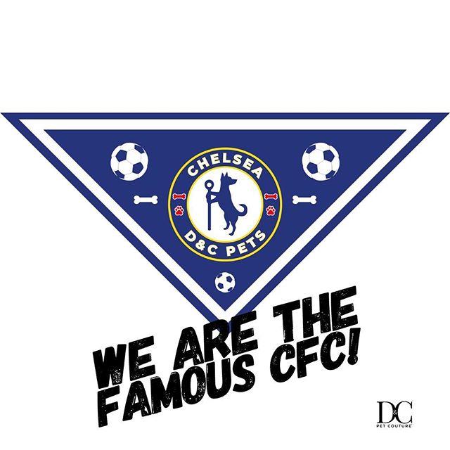 Chelsea Dog Bandana 🐶 ⚽️ 🐶 • • • • • #chelsea #cfc #ktbffh #hazard #stamfordbridge #premierleague #manchesterunited #bpl #COYB #cfcfamily #willian #terry #oscar #juventus #messi #drogba #bale #bayern #fabregas #theblues #ibrahimovic #pogba #chelseafootballclub #epl #realmadrid #zouma #ctid #courtois #prideoflondon #ronaldo