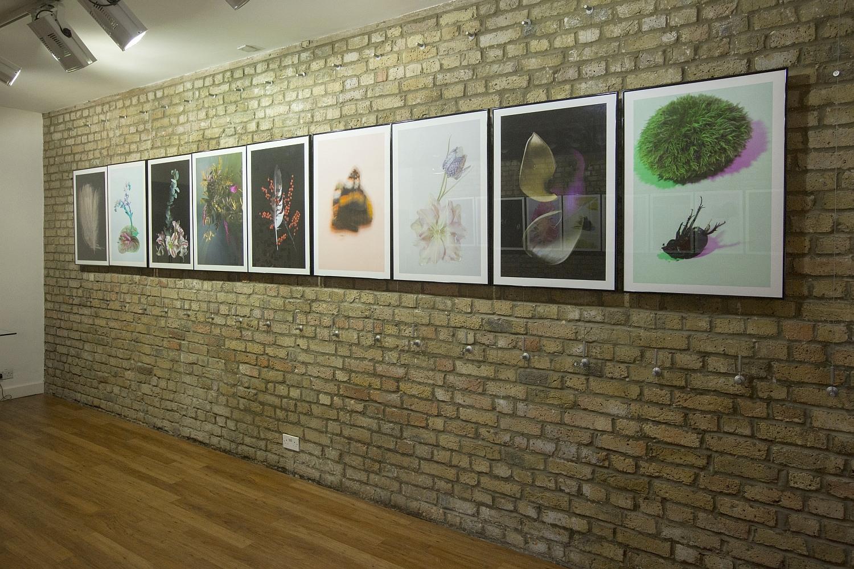 'In My Nature' exhibition, Rowan Spray, London, July 2018