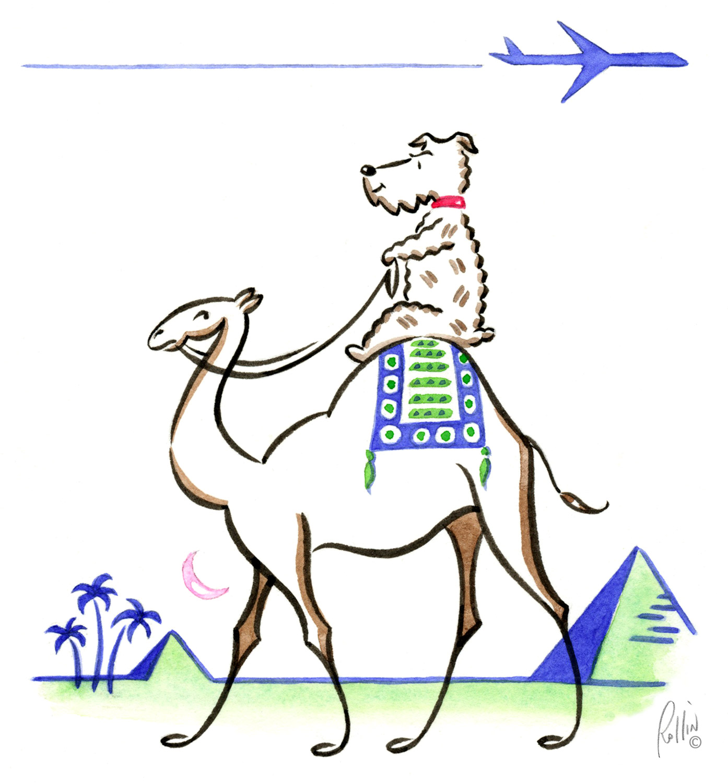 Airfare Watchdog