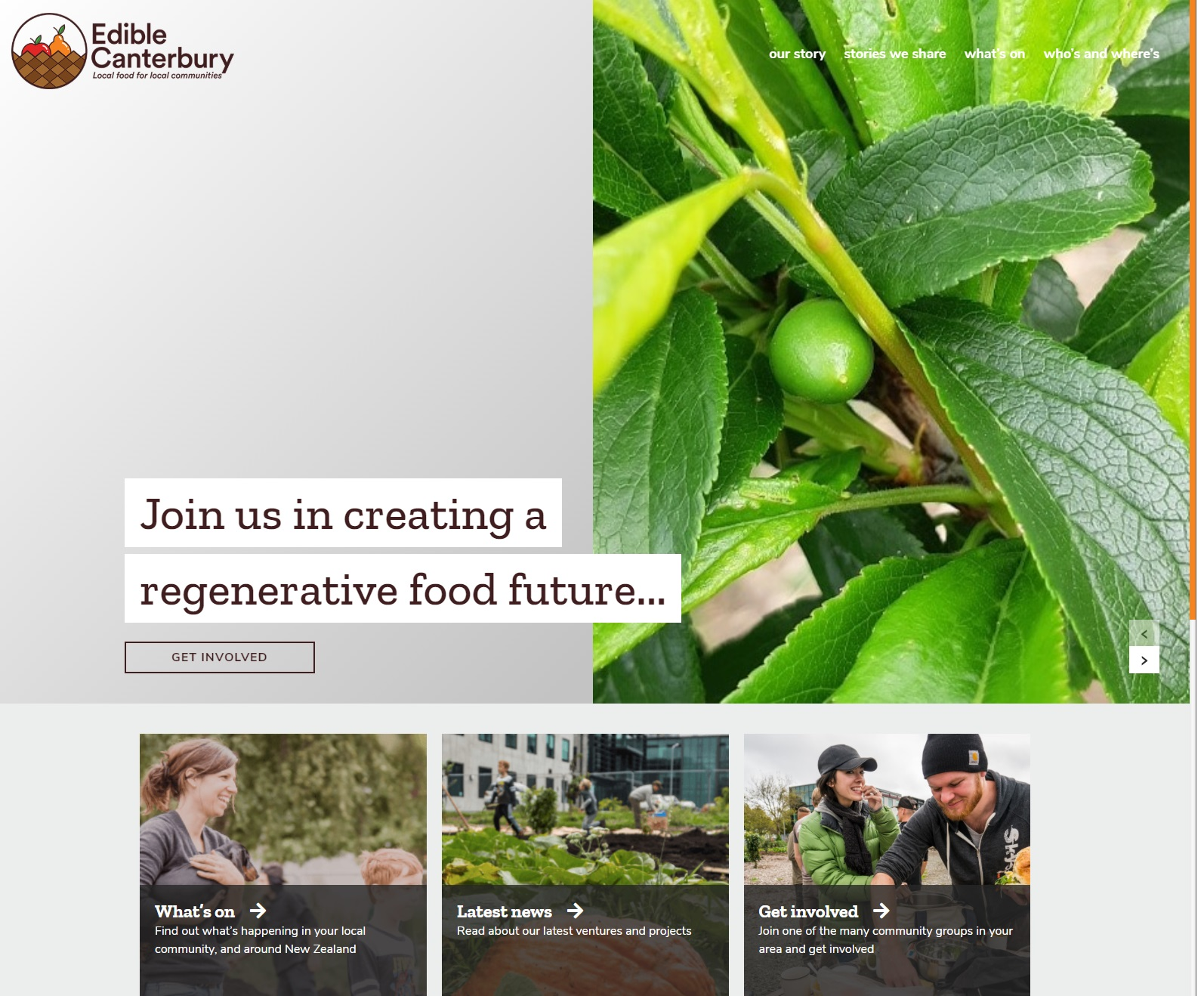 Edible Canterbury site screenshot June 2019.jpg