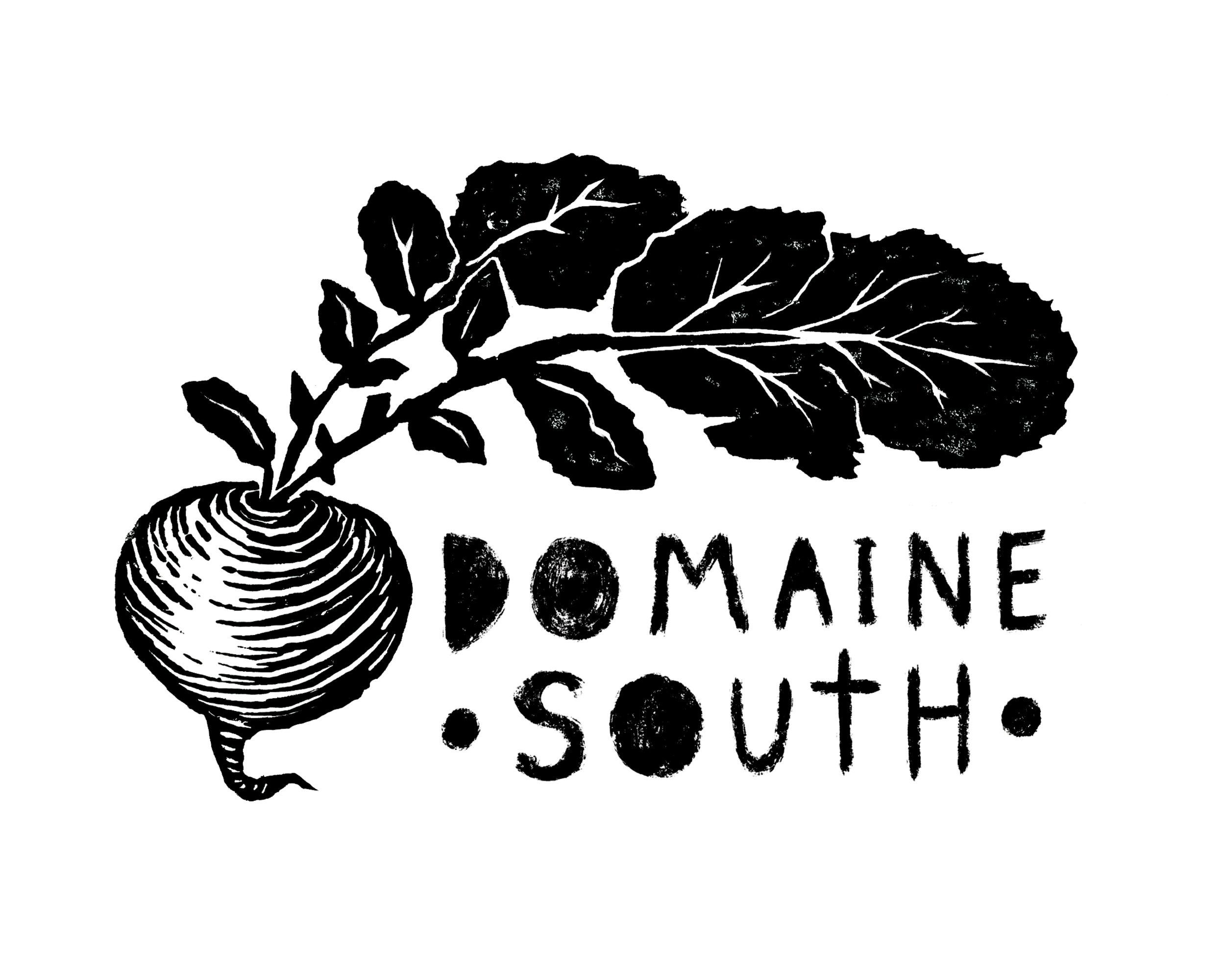 Domaine South Logo - FINAL (RGB).jpg