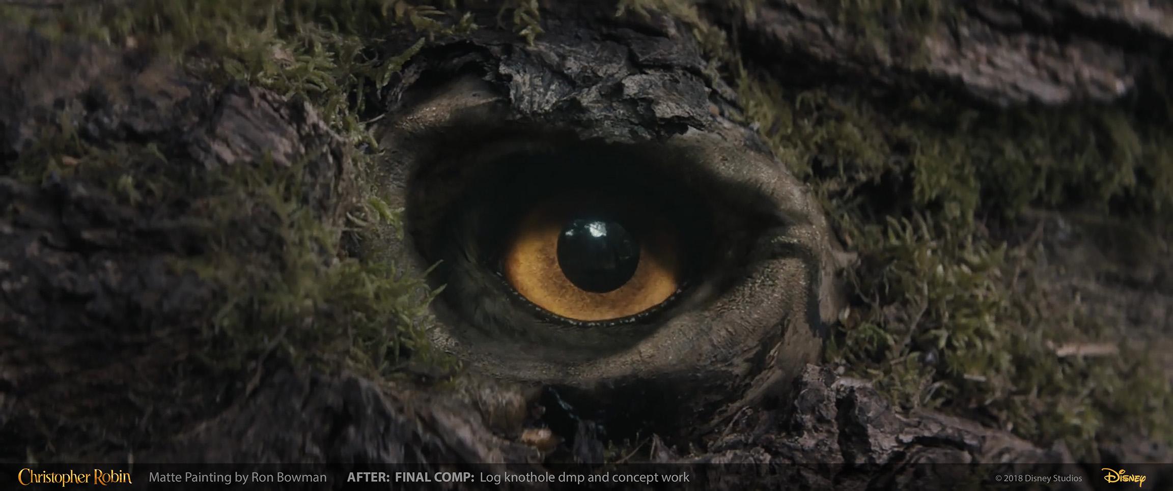 pooh_log_eyehole_02.jpg
