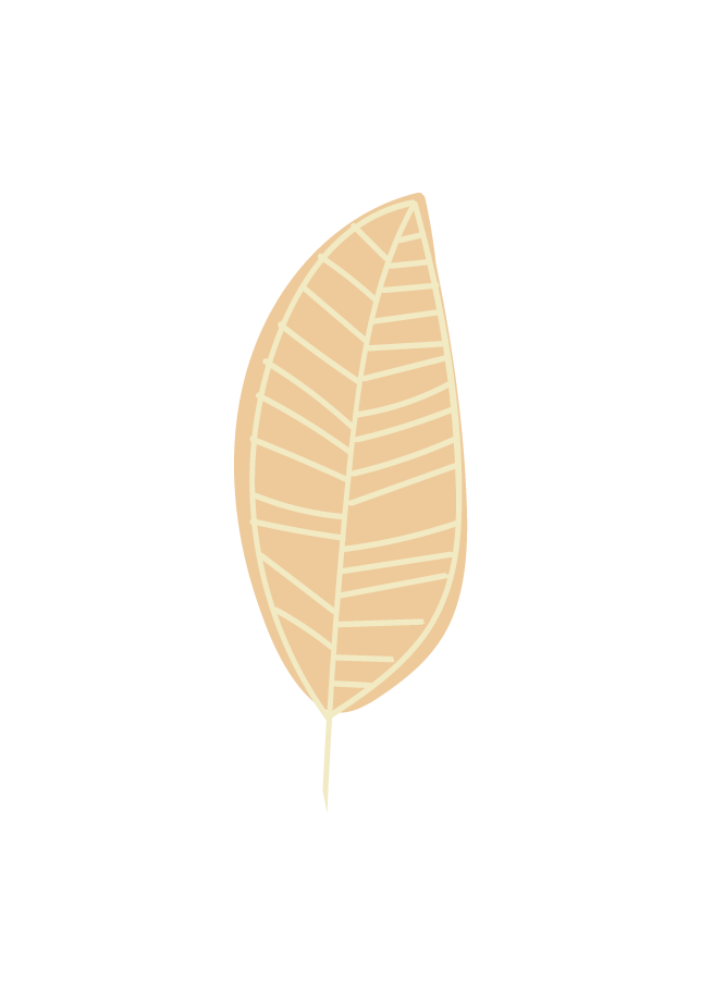 GYM Web Elements-leaf two.png