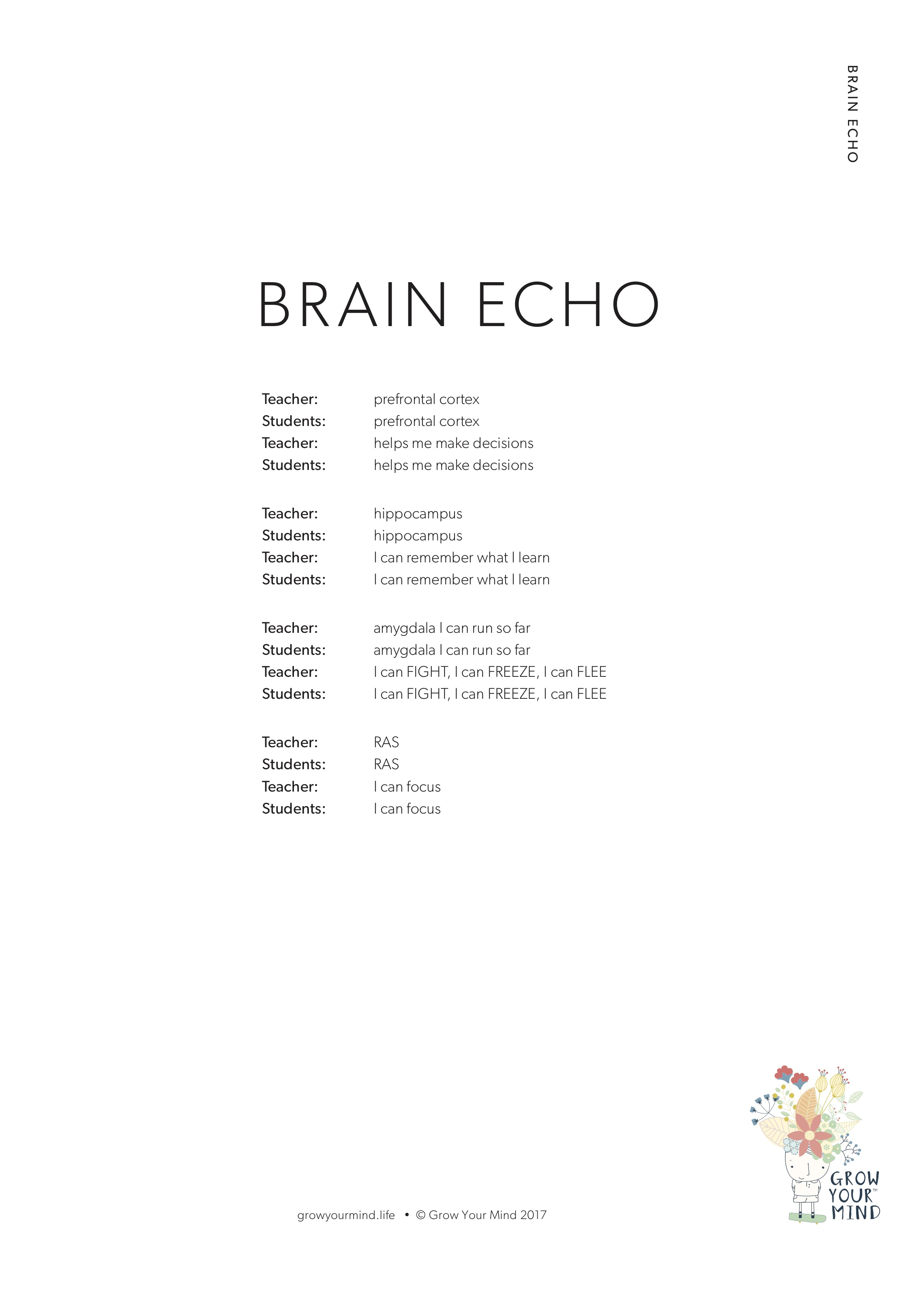 Brain Echo - A teacher resource to playfully teach the parts of the brain to Pre K - 6Theme: Brain awarenessTo go with: The Welcome to Grow Your Mind story and the Introductory lessons