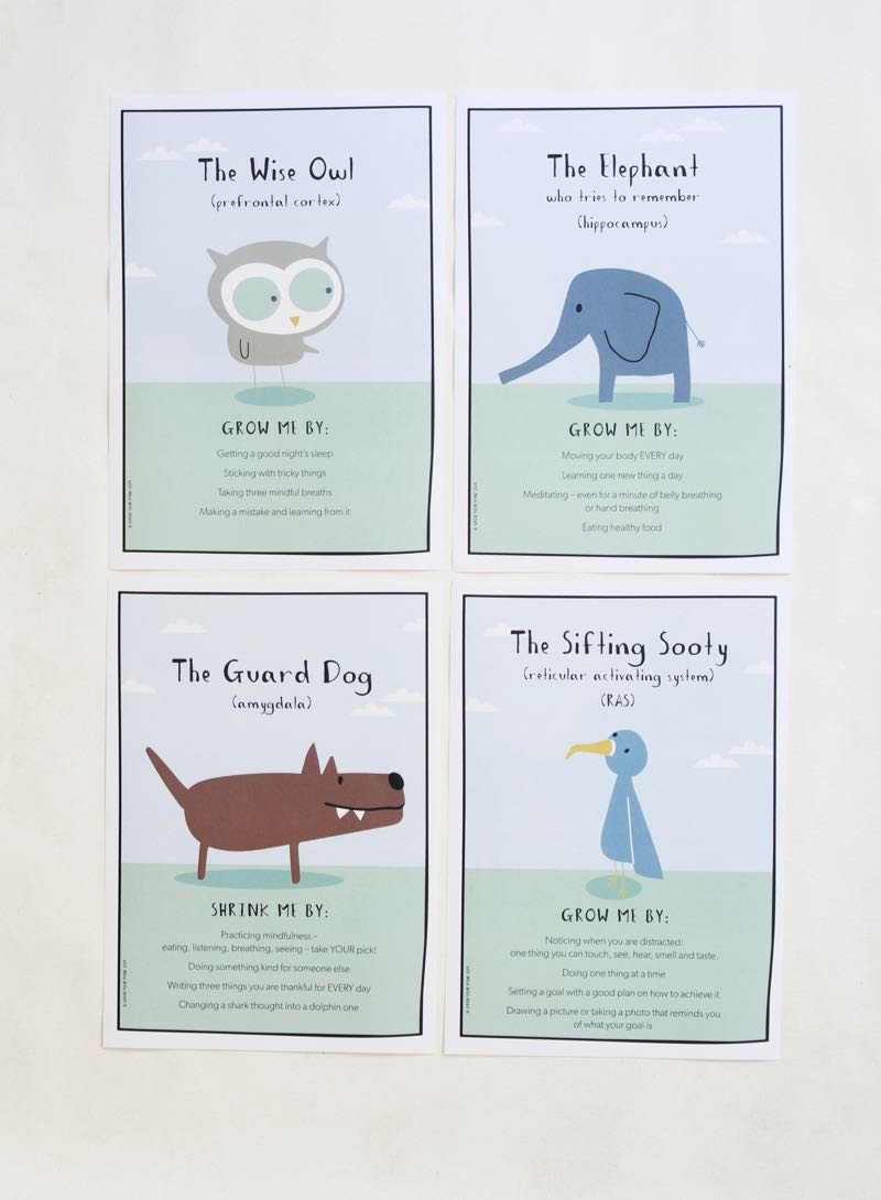 - ANIMAL TIP SHEETS - 4 Animal tips sheets, sized A4, give quick reminders on how best to support these animals/parts of your brain.