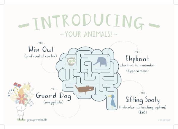 Brain Diagram A3 Poster PRINT photo.jpg