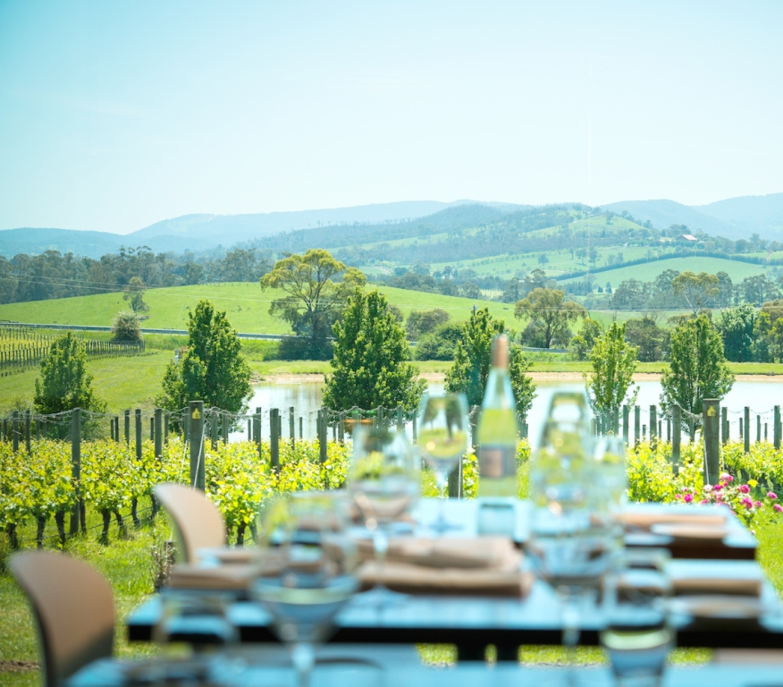 Oakridge-Winery-Views-Coldstream-Yarra-Valley.jpeg