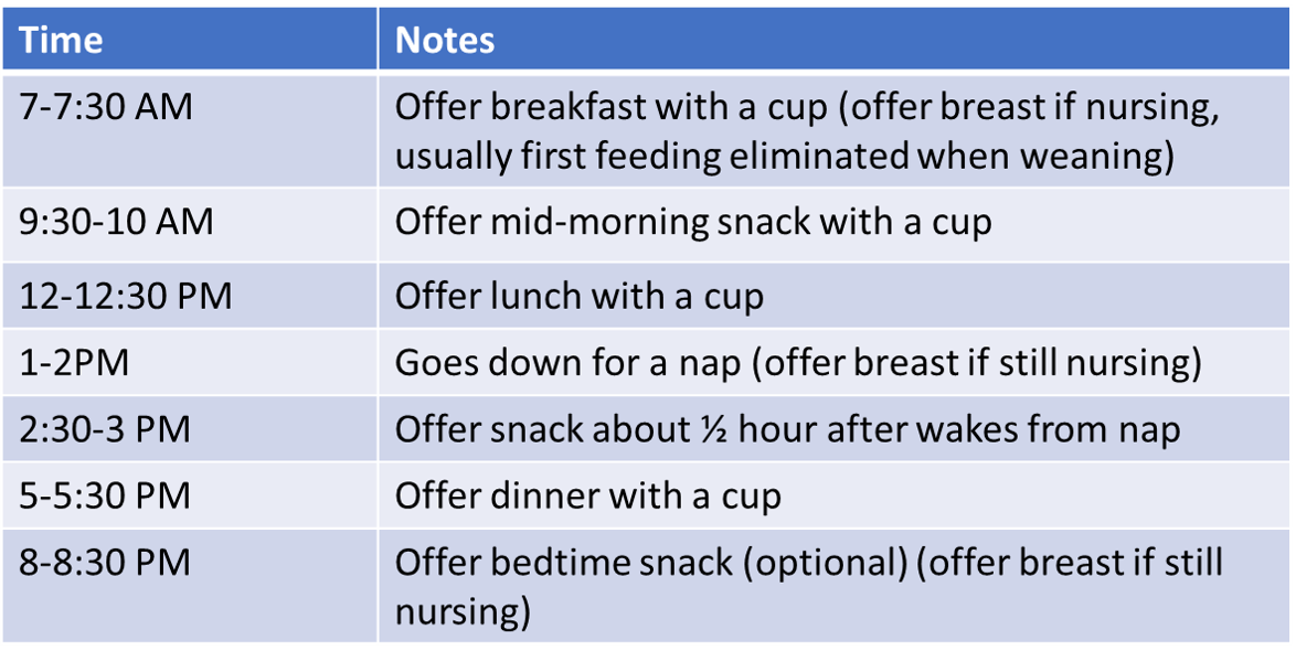 toddler feeding schedule.png