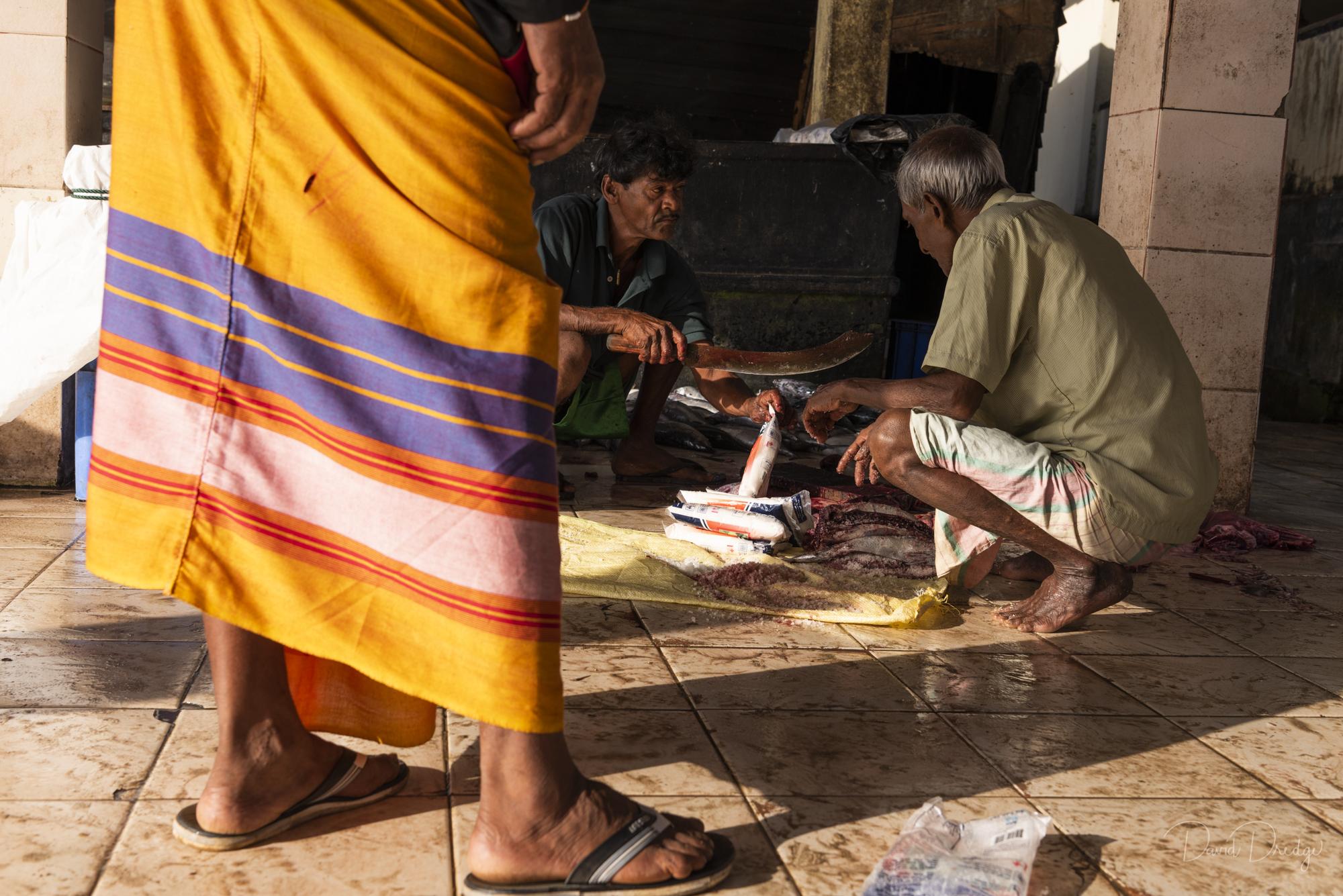 salting fish fish market sri lanka