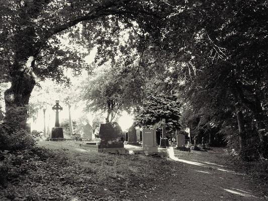GravesSML.jpg