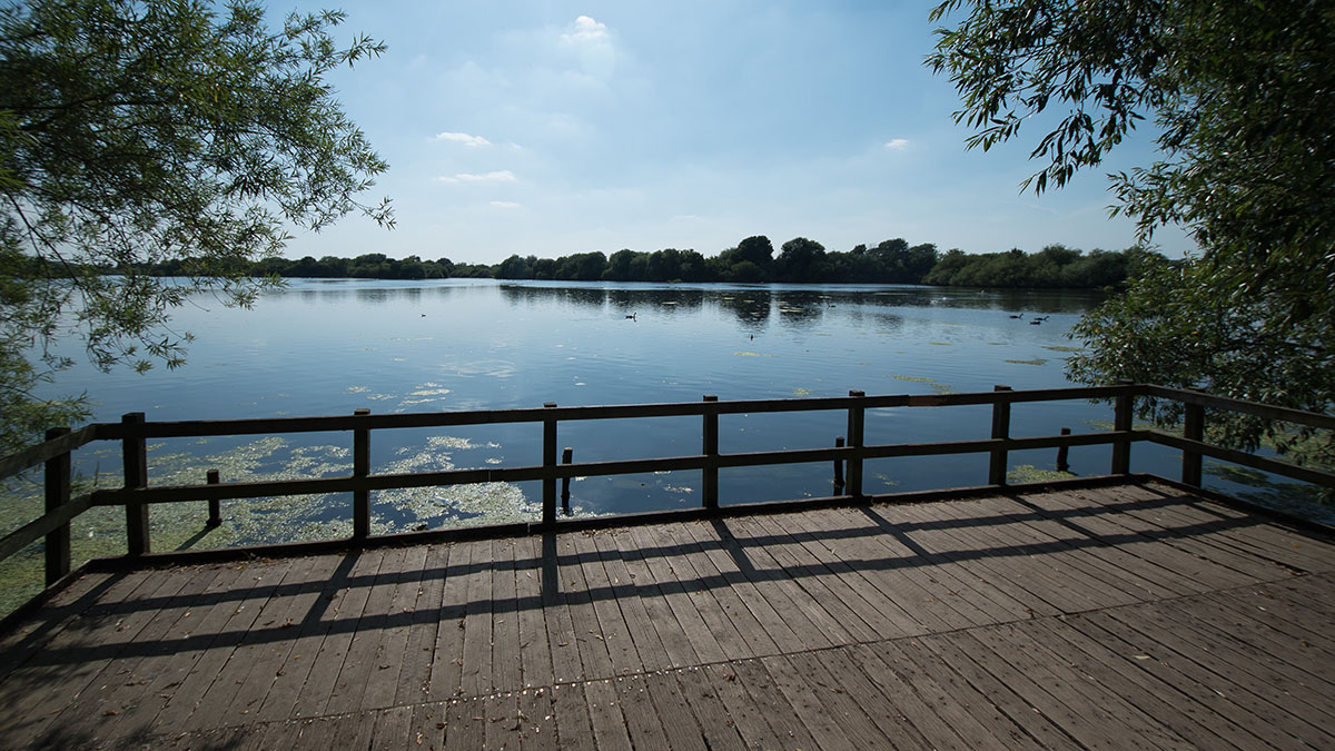 A stunning view from one of the many lake side observation decks and hidesat Attenborough Nature Reserve