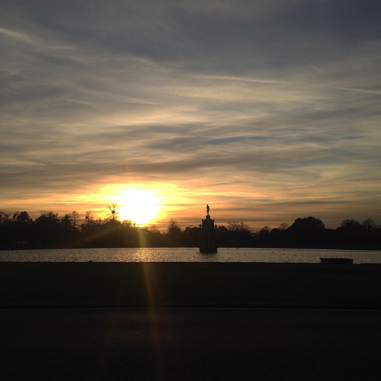 BUSHYPARK SUNSET.jpg