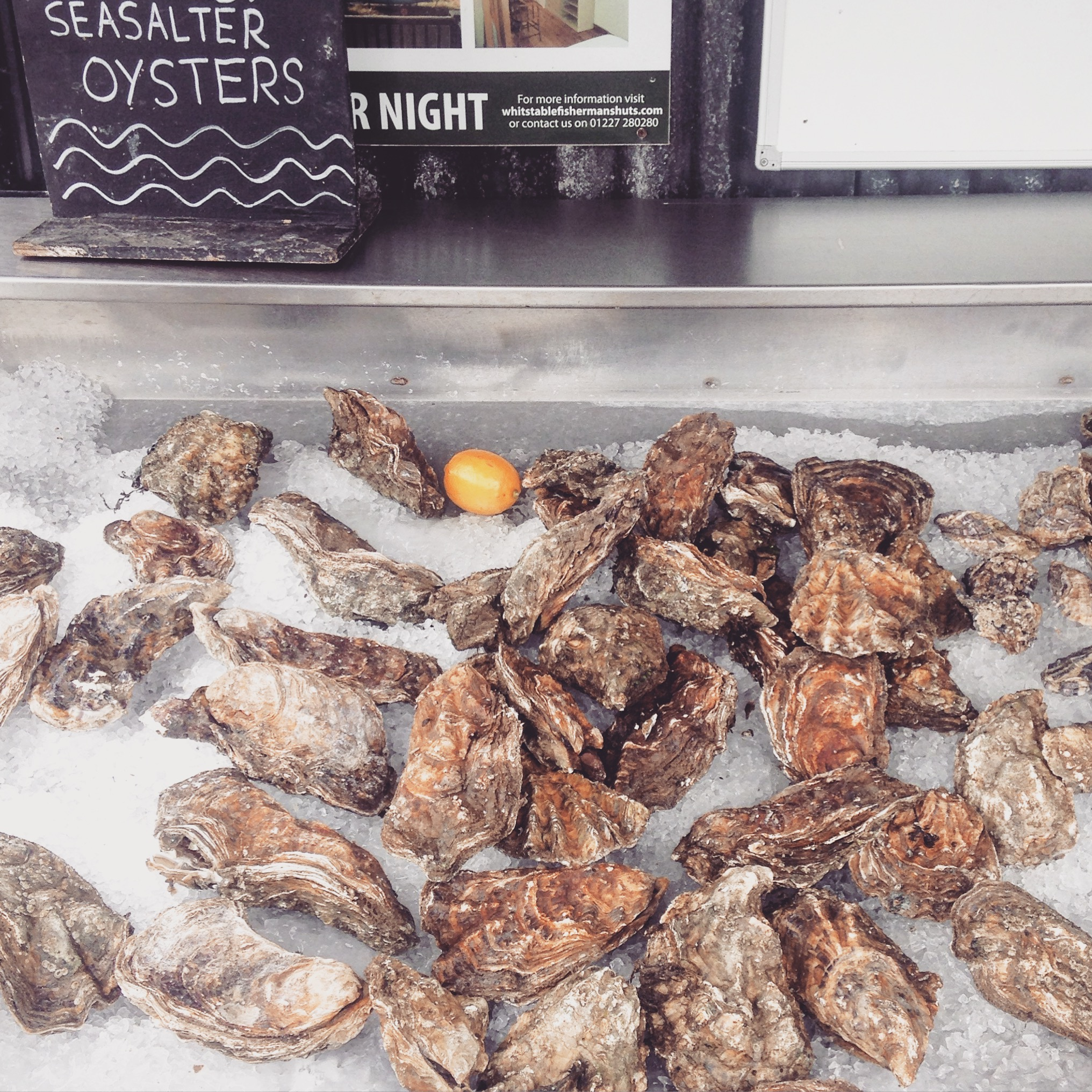 whitstable oysters.jpg