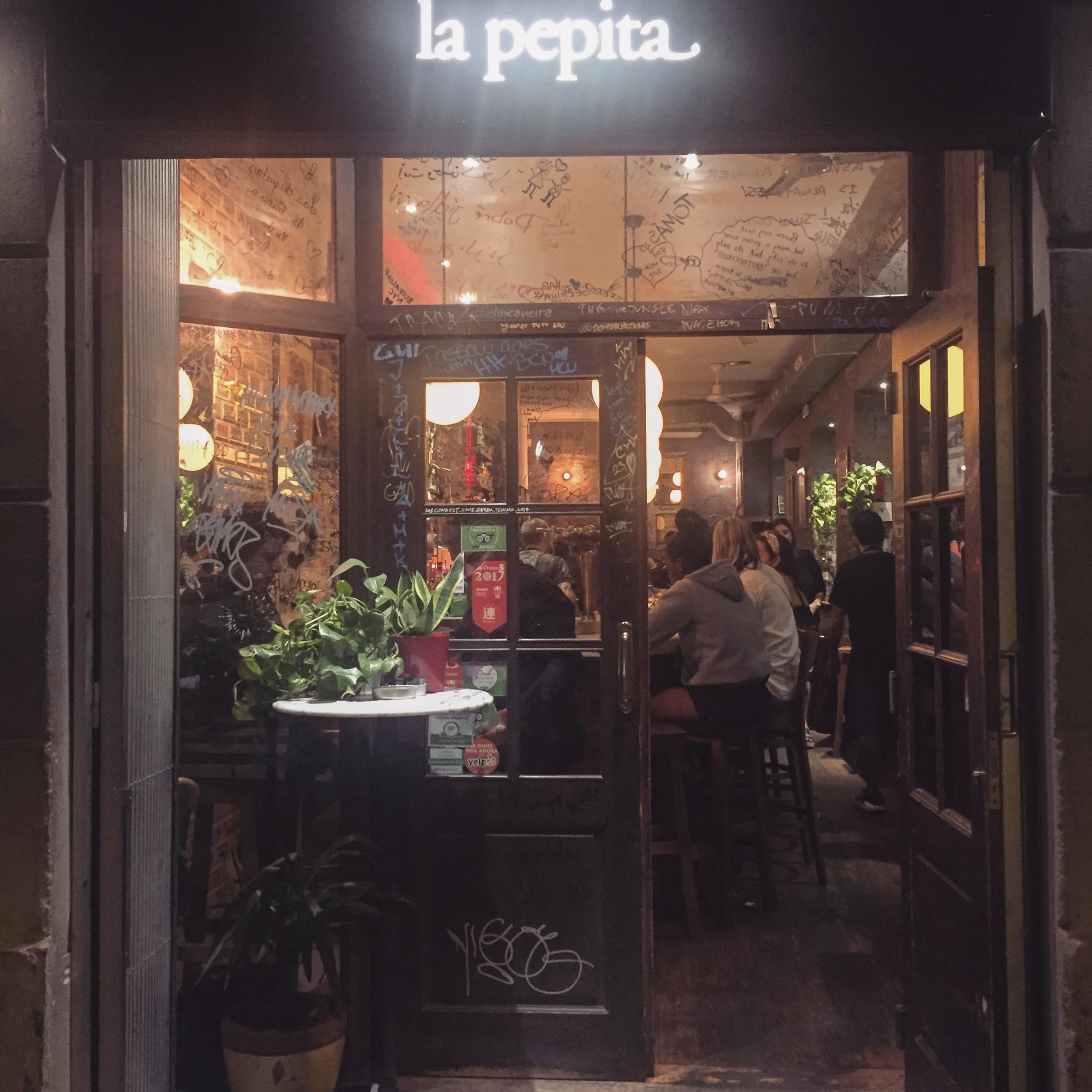 pepita full front.JPG