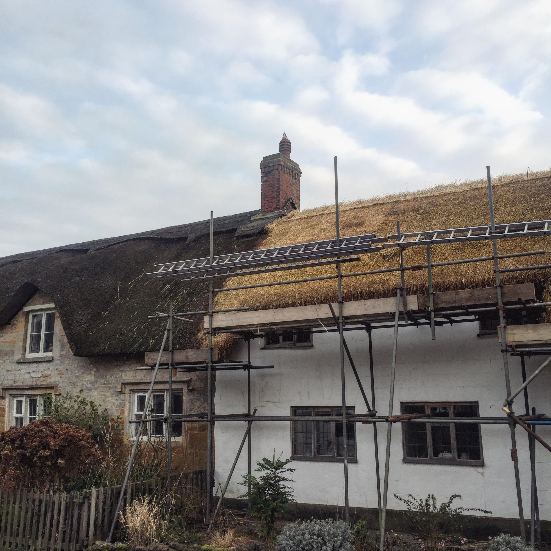thatch roofs.JPG