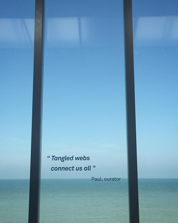 tangled .JPG