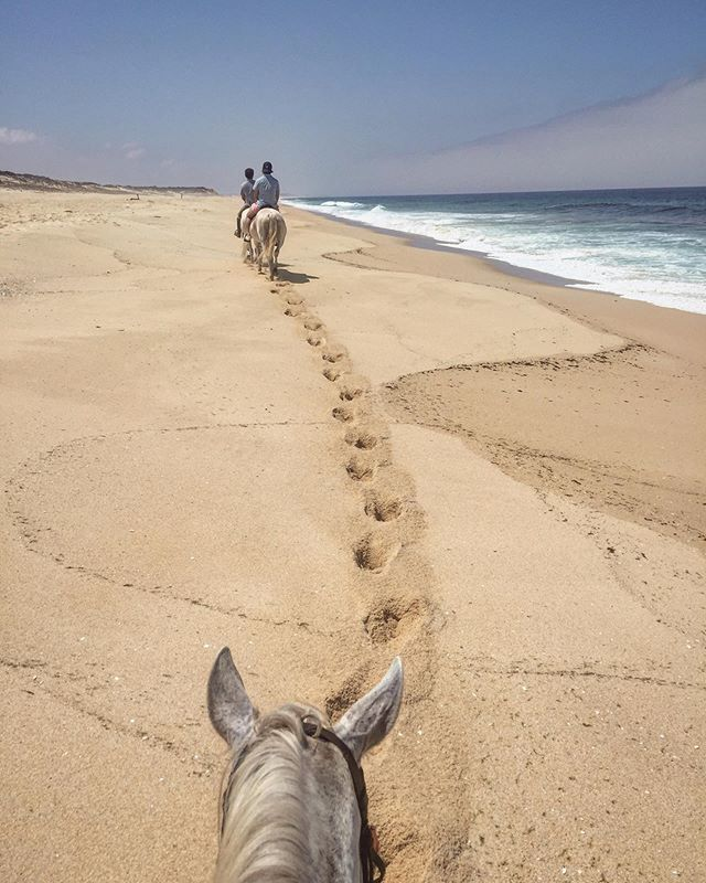 The most magical and memorable morning spent horseback riding the white sands of Melides while the ocean waves lapped at our feet 💫Thank you so much to Luís from @passeiosmelides and to my lovely horse Mr Risonho for being such a gent🐴