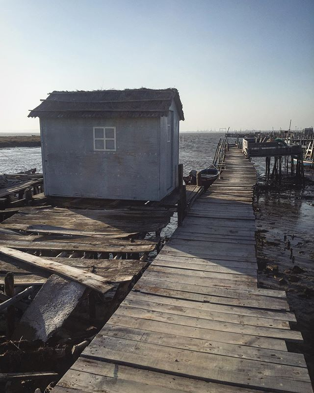 Carrasqueira, a traditional fishing village where the Palafitic Pier is built on higgledy piggledy stilts that stretch out into the water of the Sado Estuary. Quite a spectacle!