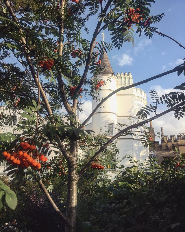 Such a pleasure to have this beautiful sight @strawbhillhouse right on my doorstep, neighbours with a real life Disney castle! I always admire it as I walk by and have wandered the gardens yet never actually stepped foot inside. Really must get around to having a snoop!