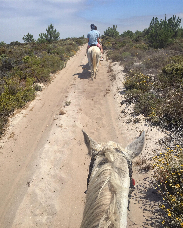 horesback riding .JPG